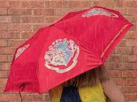 Harry Potter Tylypahkan Väriävaihtava Sateenvarjo