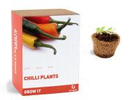 Chilikasvin kasvatuspaketti